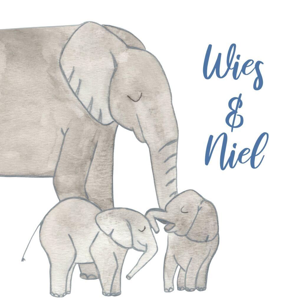 Geboortekaart Niel & Wies (voorkant)