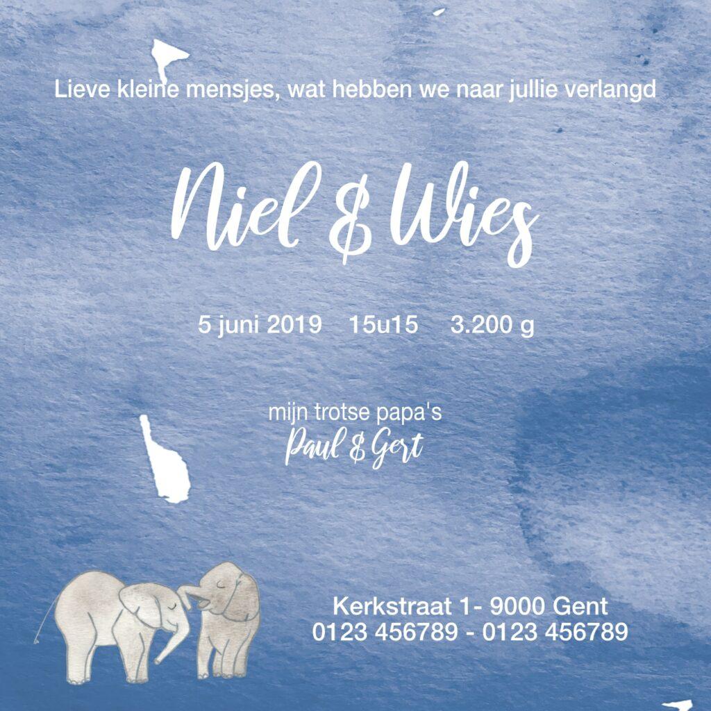Geboortekaart Niel & Wies (achterkant)