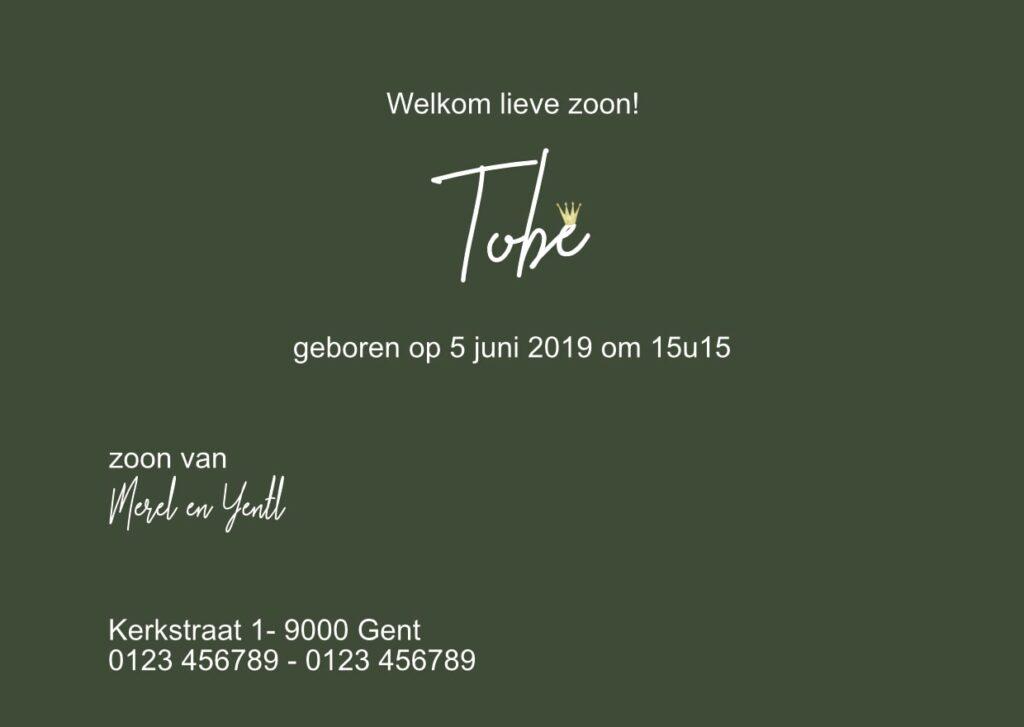 Geboortekaart Tobe (achterkant)