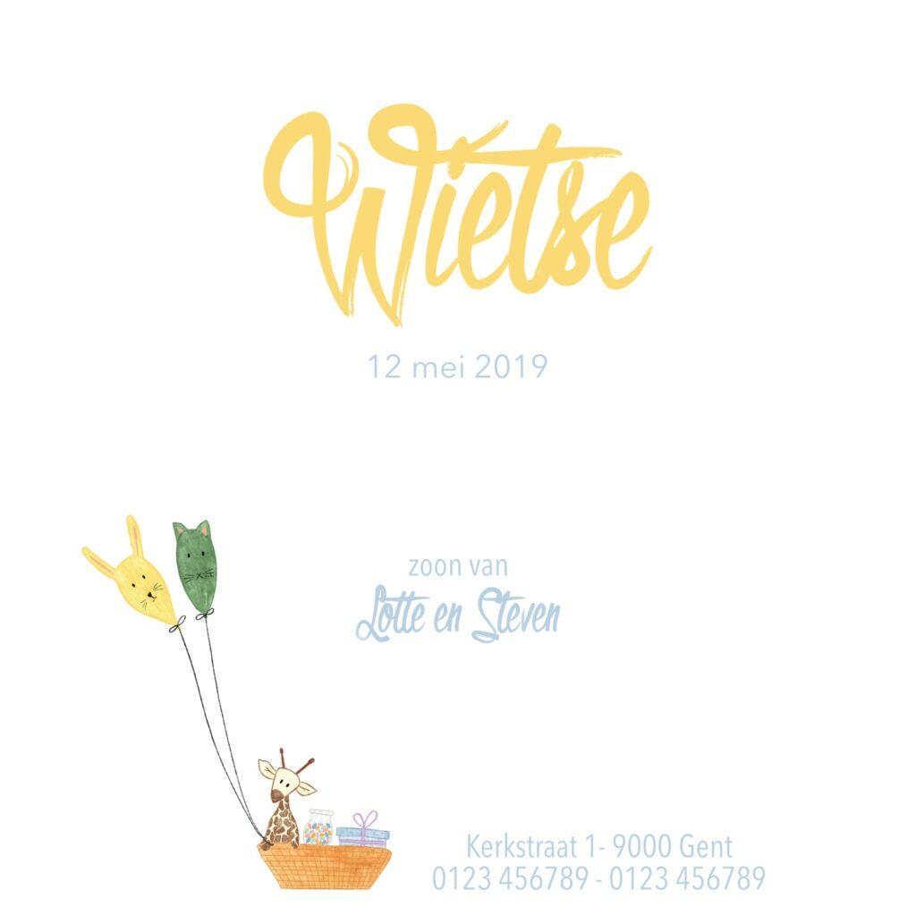 Geboortekaart Wietse (achterkant)
